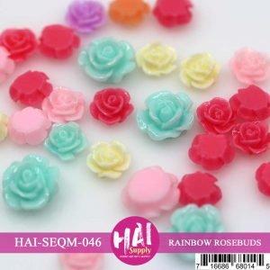 HAI-rainbow rosebuds