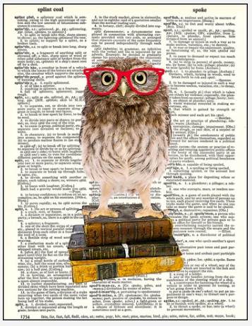 Dictionary Prints Wise Little Owl