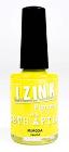 IZINK Pigment Seth Apter Mimosa