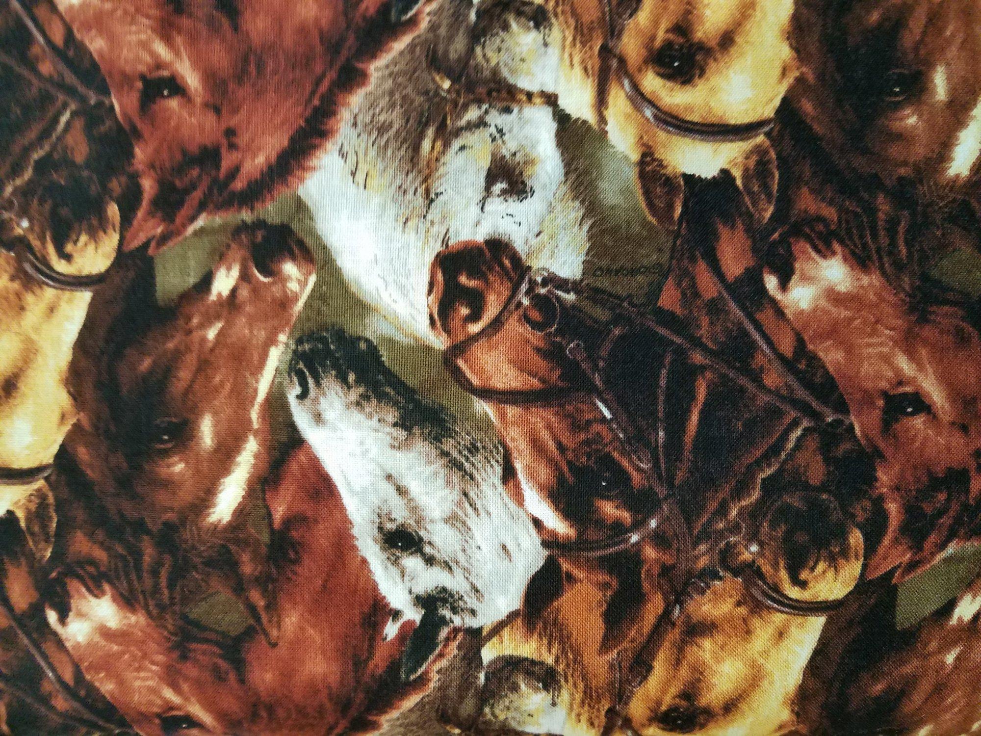 25325 BRO1 World Of Horses