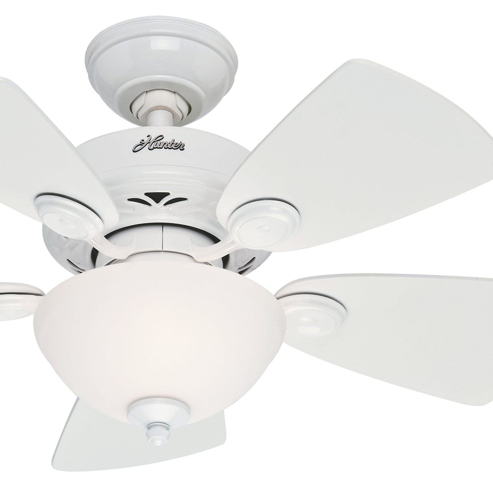 Hunter Fan 34 Snow White Finish Ceiling Fan with Painted Cased White Glass Light Kit