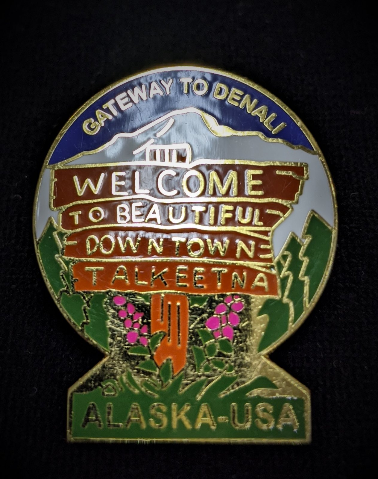 Welcome to Beautiful Downtown Talkeetna Collectible Pin