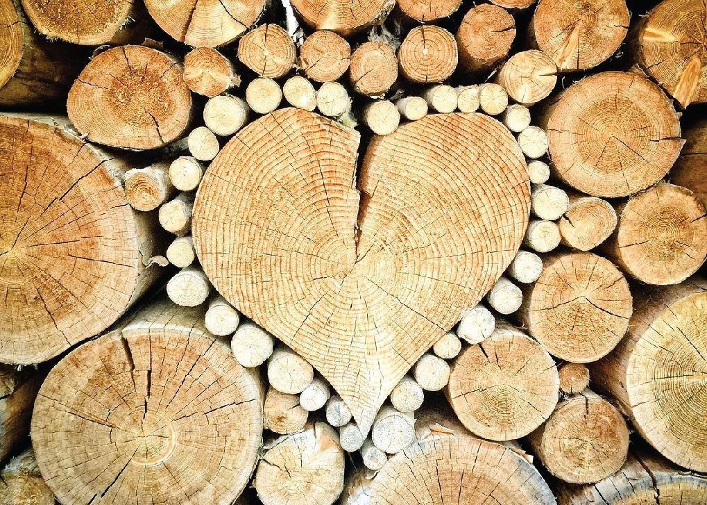 Wood Pile Heart Greeting Card