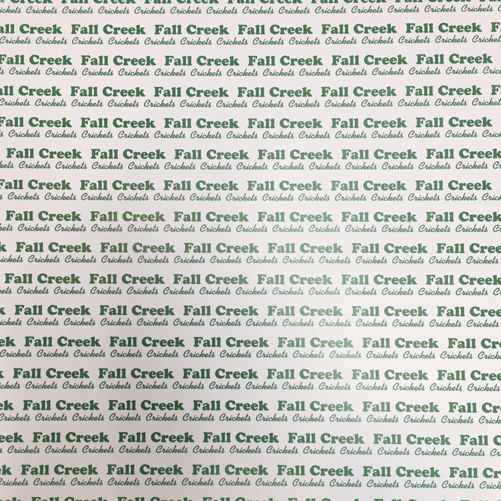 FALL CREEK CRICKETS 12X12