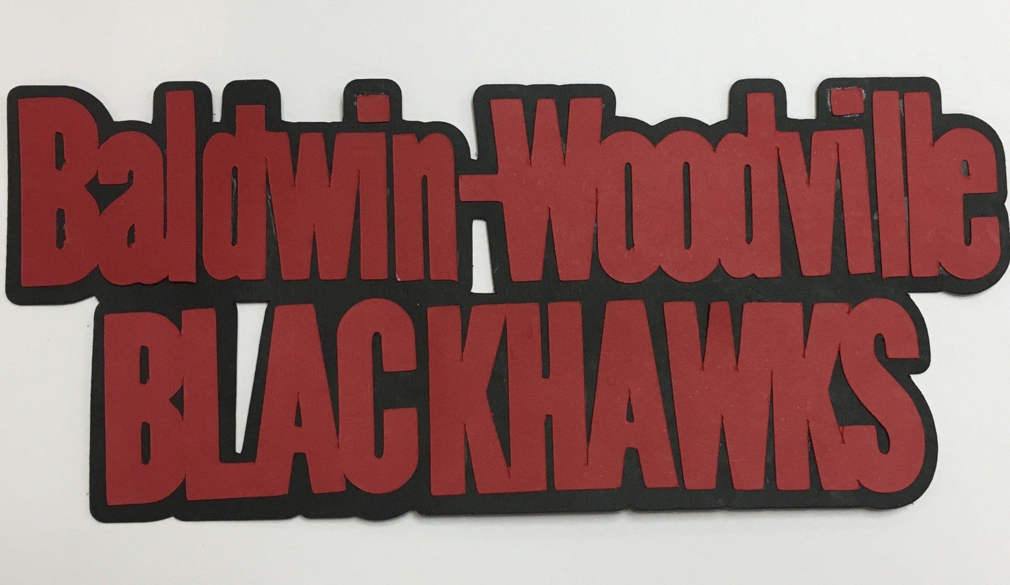 BALDWIN-WOODVILLE BLACKHAWKS die cut