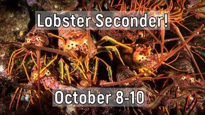 Lobster Seconder Aboard the Vision