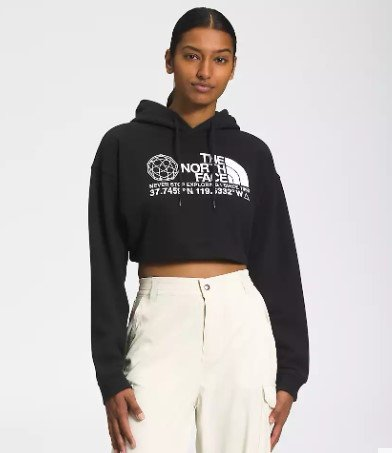 The North Face Coordinates Cropped Pullover Hoodie