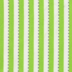 Anthology BC28-7 Dotted Stripes Green