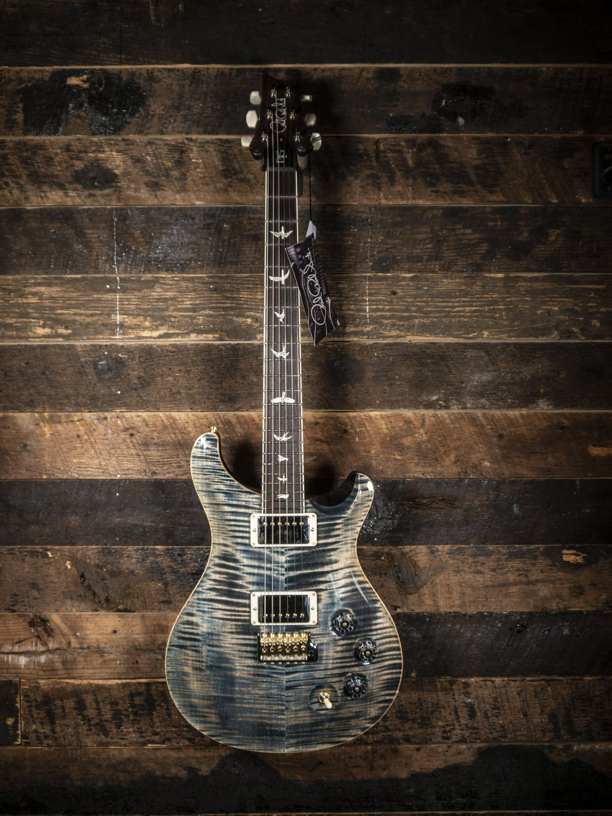 PRS Hand Selected DGT ( David Grissom ) 10 Top Birds Faded Whale Blue