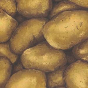 Farmer John 2 Potatoes