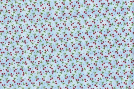 Cherries on light blue