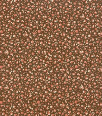 Windham Fabrics Nuts & Berries