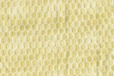 Honeycomb Fence