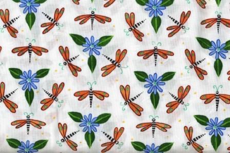 Dragonflies on white