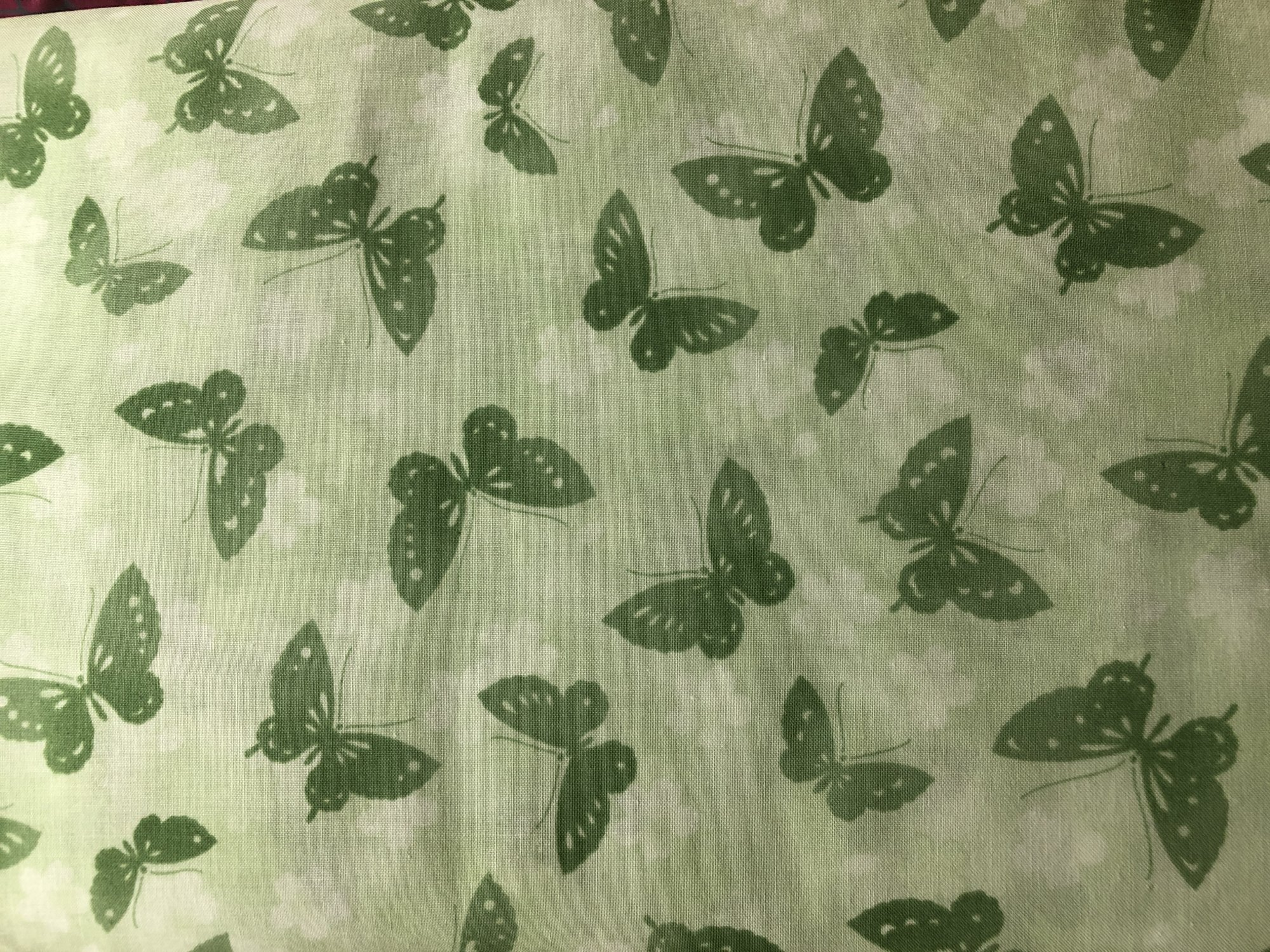 Tone It Up - Butterfly Light Green