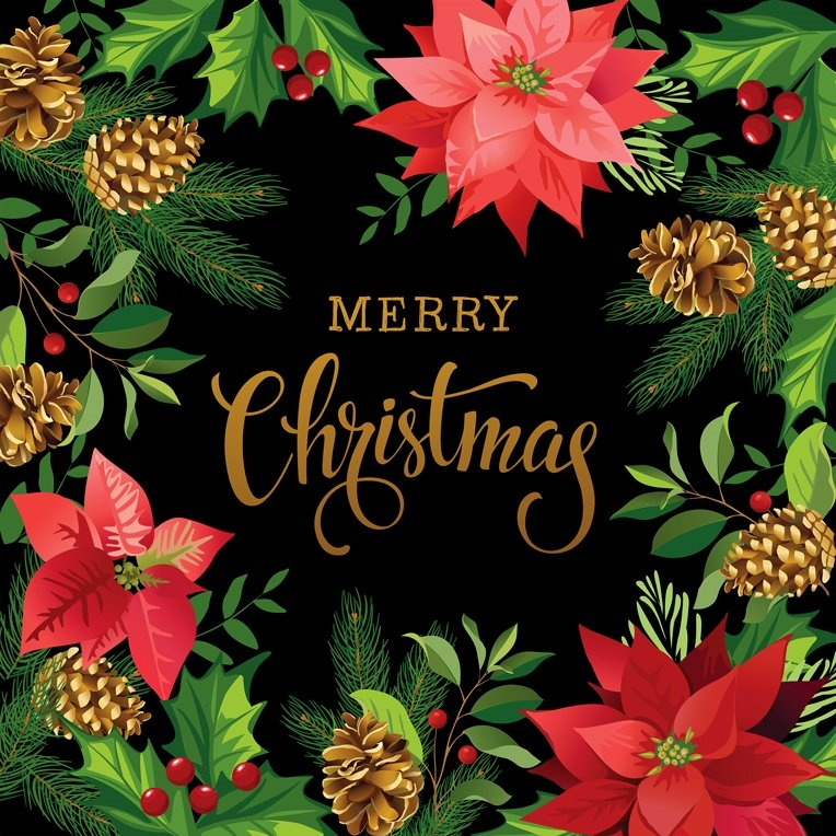 Gradients Holiday Poinsettia Christmas Digital Panel 57 x 57 by Moda - Black