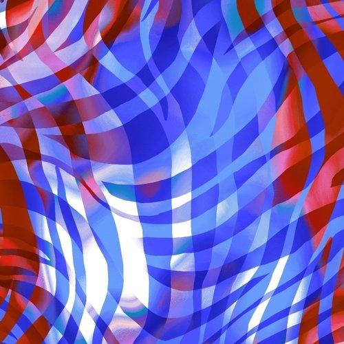 108 Zebra Skins Wide Quilt Backing by Color Principle for Henry Glass - Patriotic