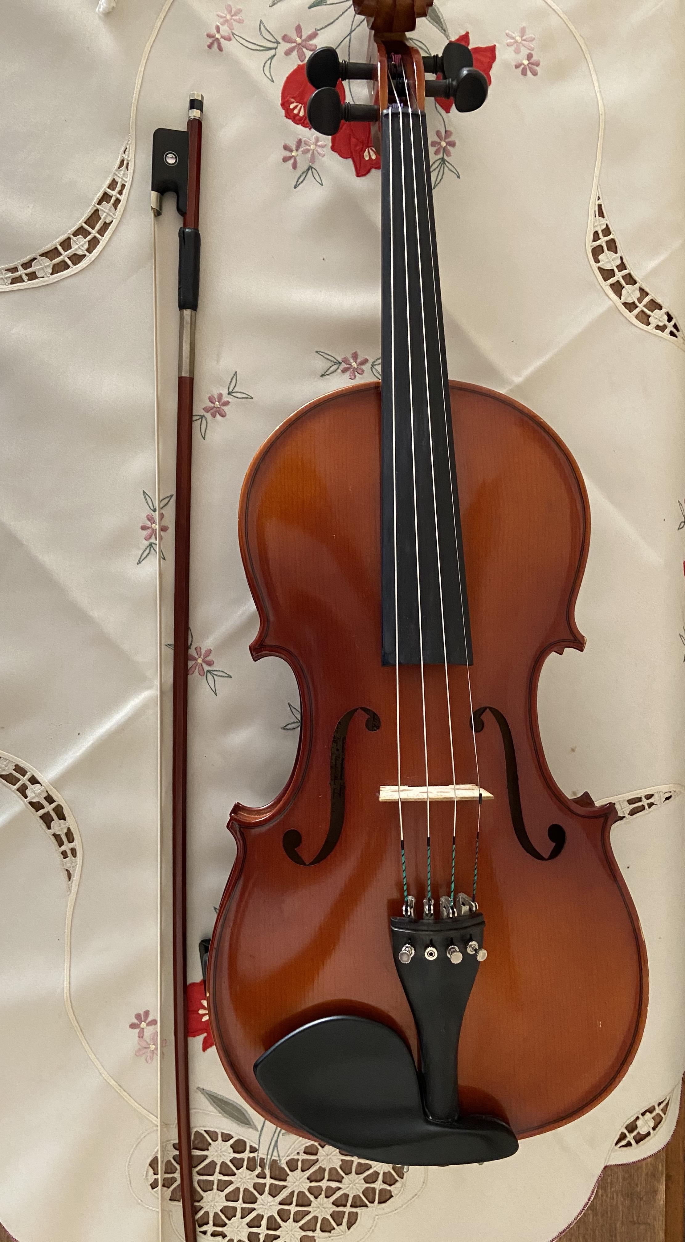 Violin/Viola/Cello Lessons -Robin