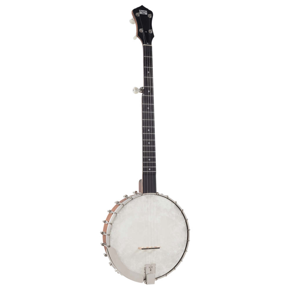 Recording King RK-OT25-BR Madison Series Open Back Banjo with Scooped Fretboard