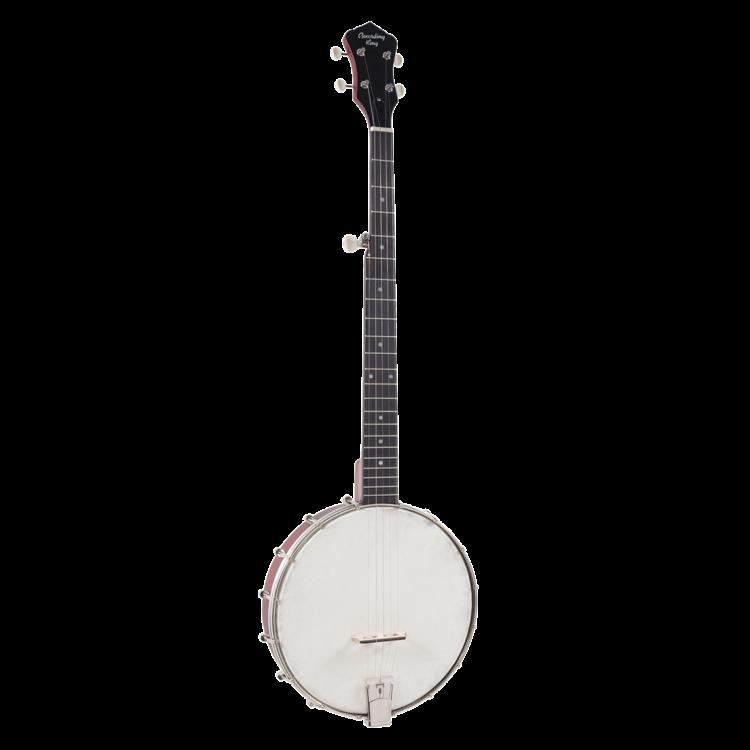 Recording King RKOH-05 Dirty 30s open-back banjo