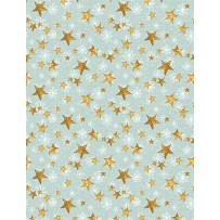 Friendly Gathering Stars Teal