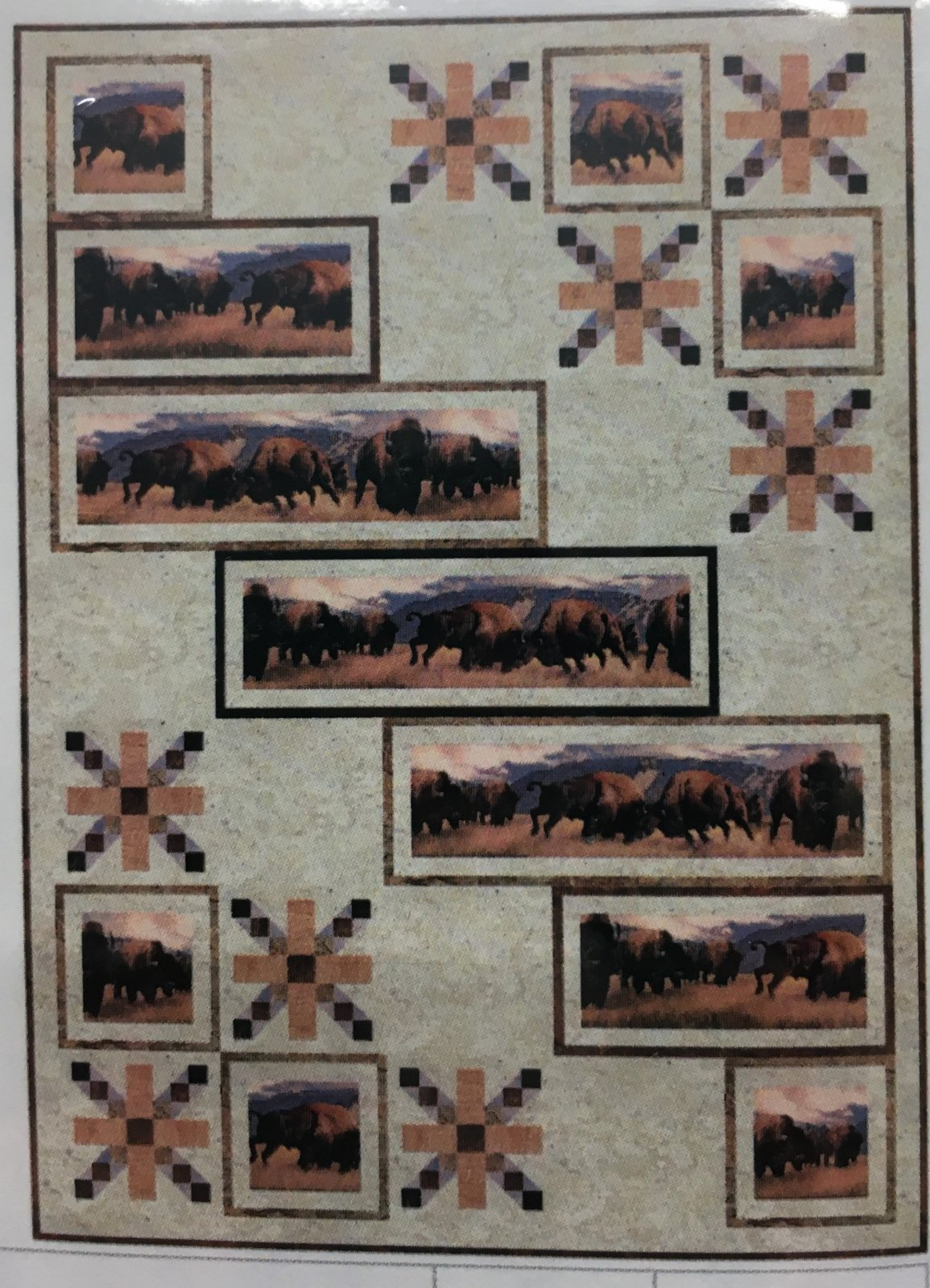 Bison at the Border Kit Lap 48 x 66