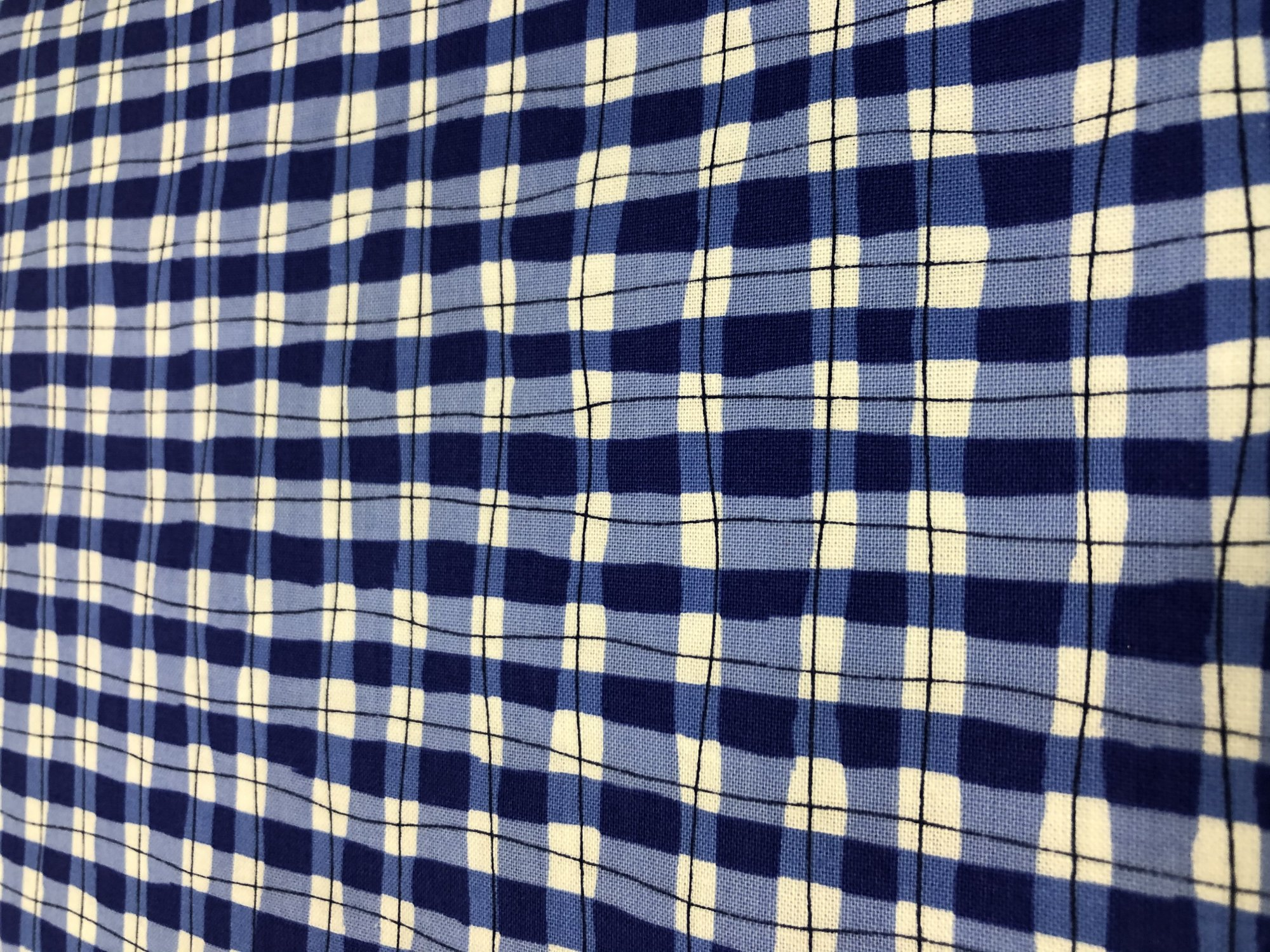 Garden Party Blue Checker