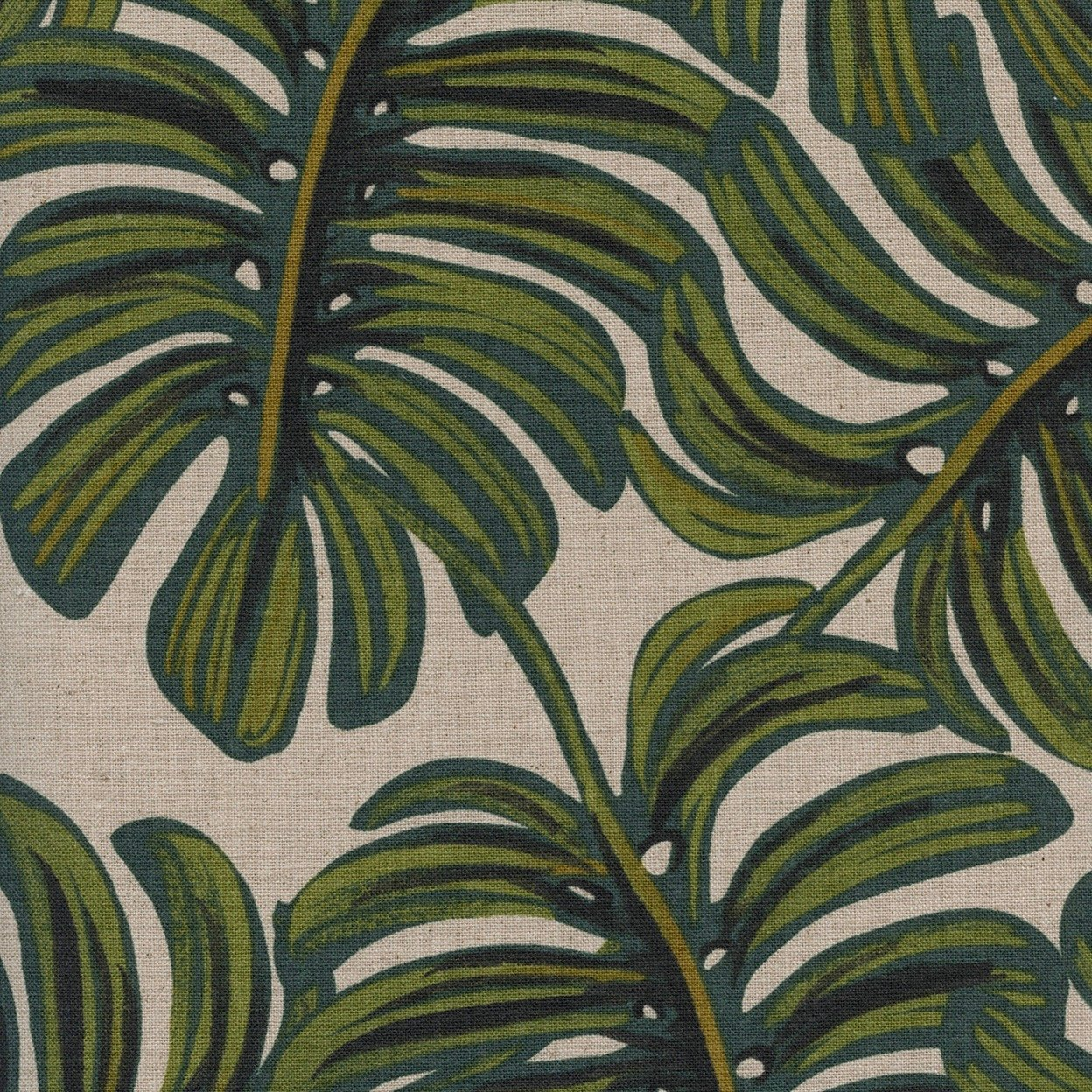 Monstera Canvas Natural, Menagerie