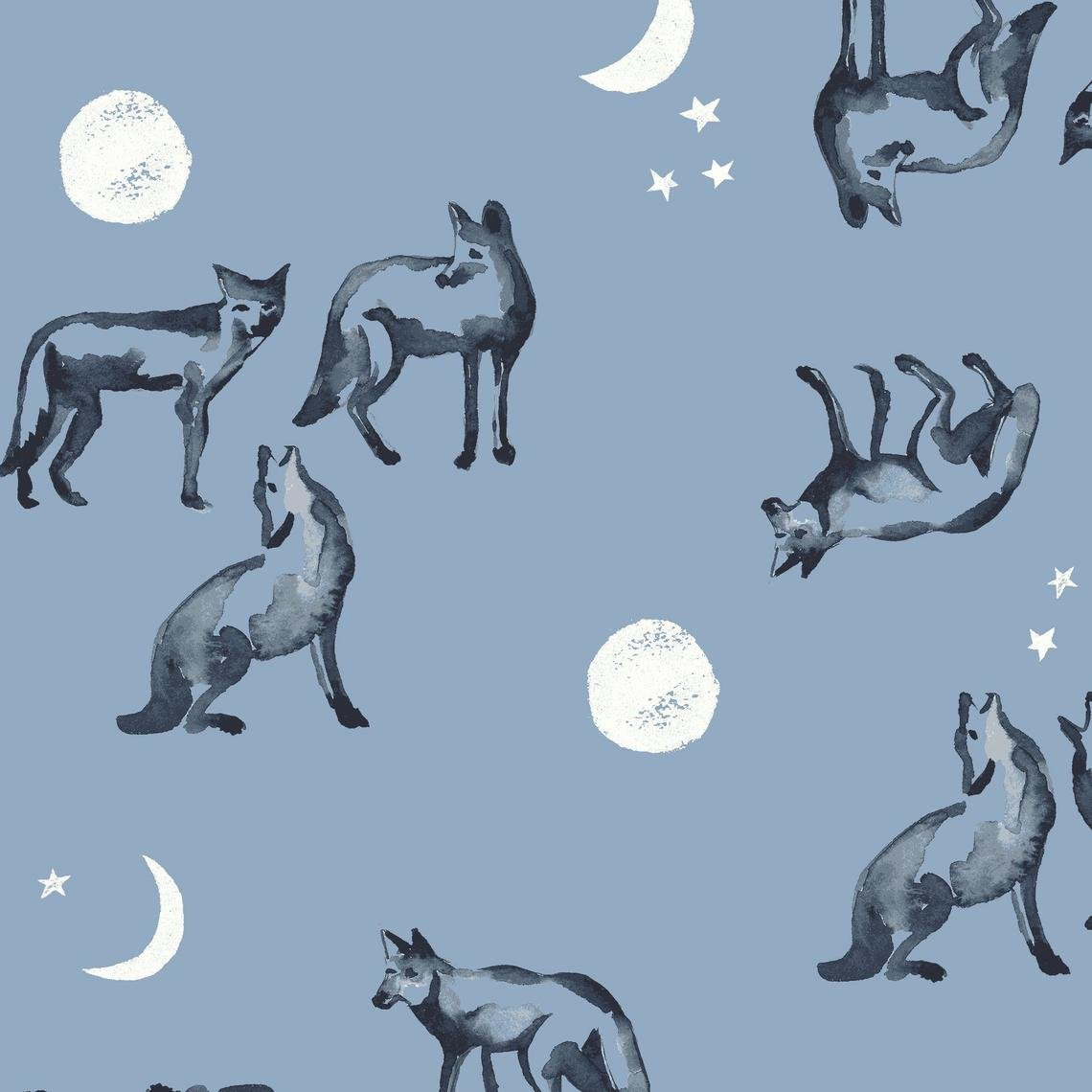 Coyote Moon, Journey
