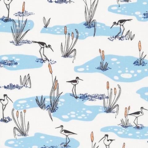 Wetlands, Blue, Terrestrial