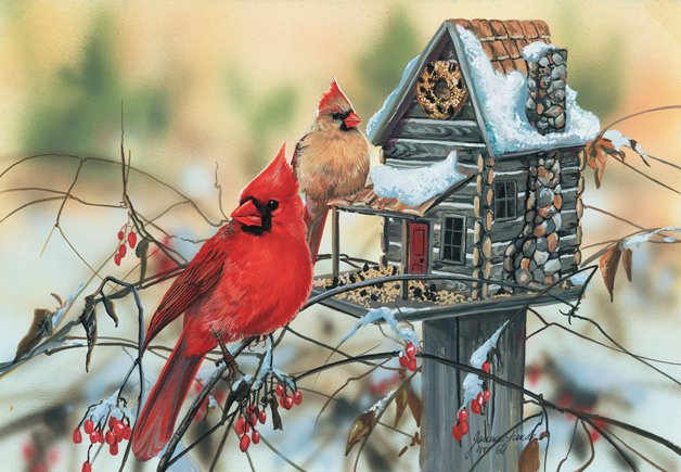 Cardinal's Rustic Retreat Puzzle