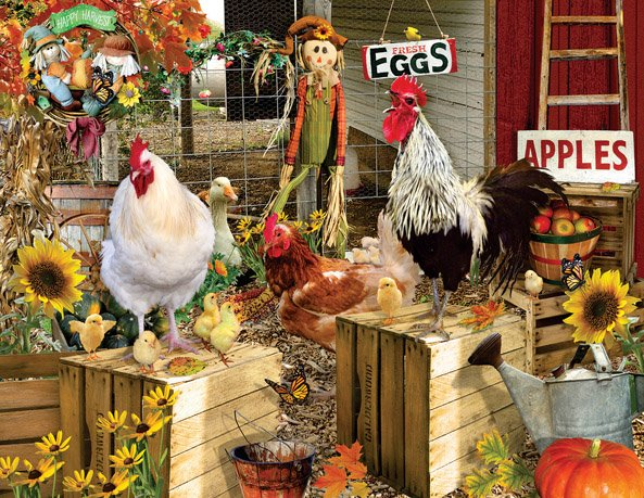 Chickens on the Farm Puzzle