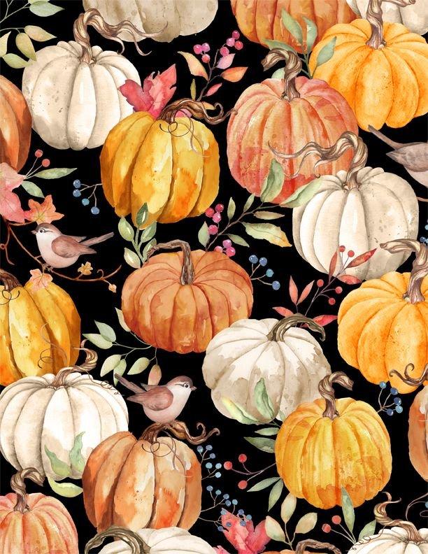 Autumn Day - Pumpkins Black