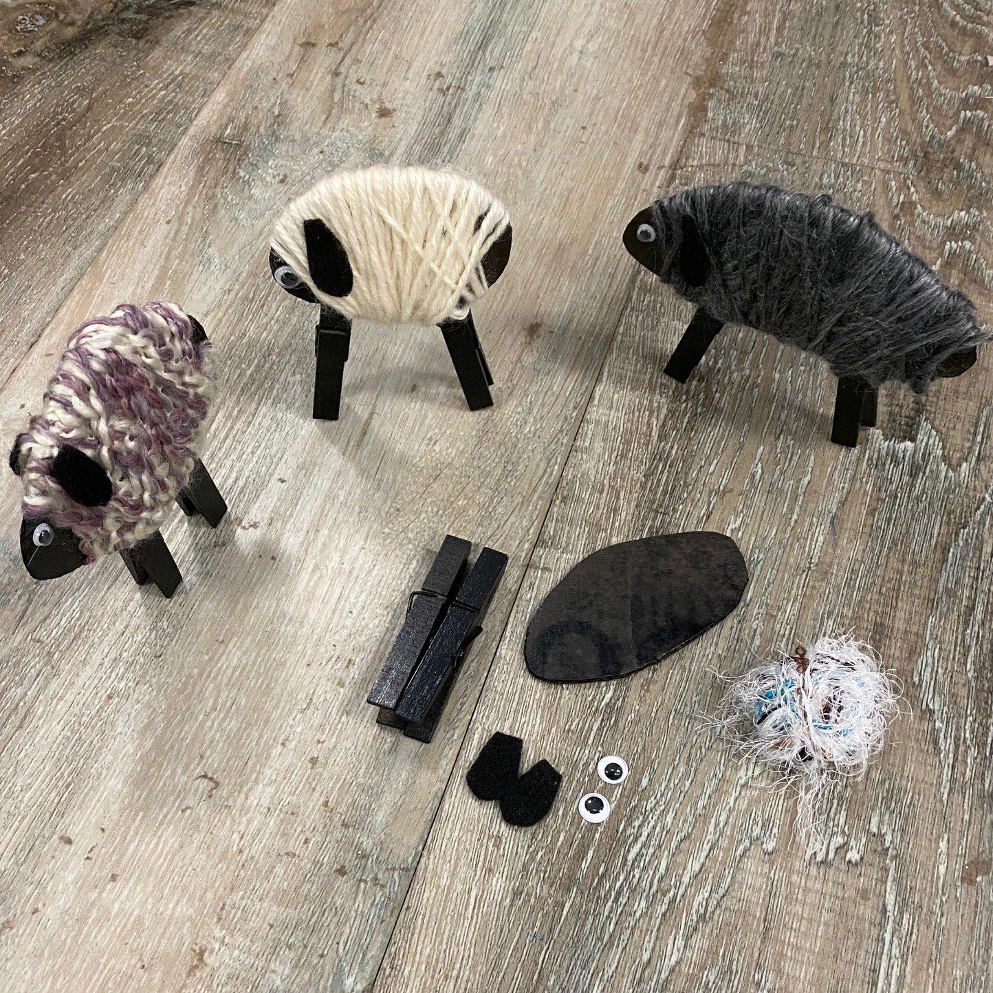 Wednesday Kids - Sheep