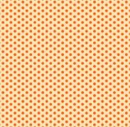 Wild & Free Small Set Dots Orange 9567 43