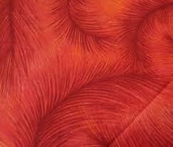 Benartex Feathers