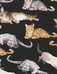 tt cat c5751