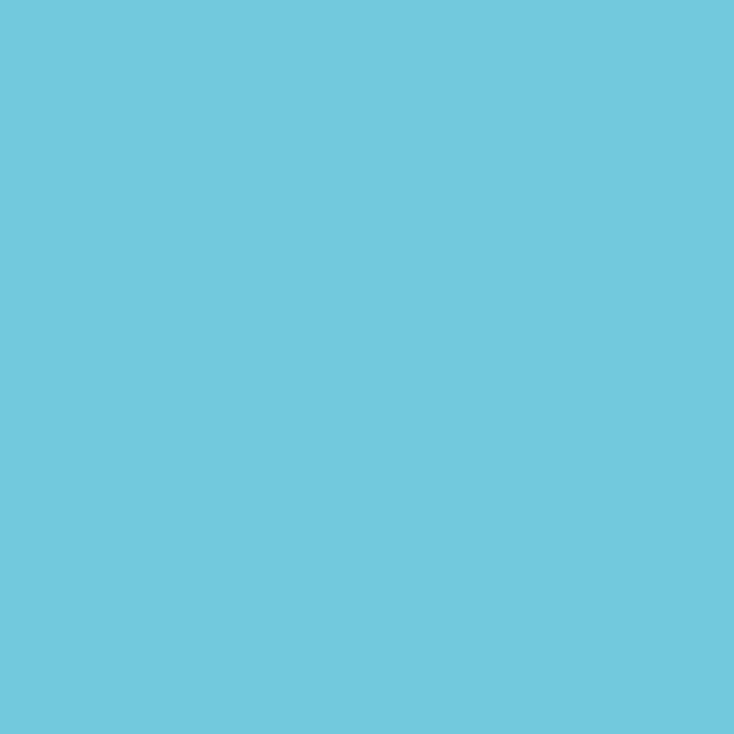 Paintbrush Studios Painter's Palette Solid Bright Aqua
