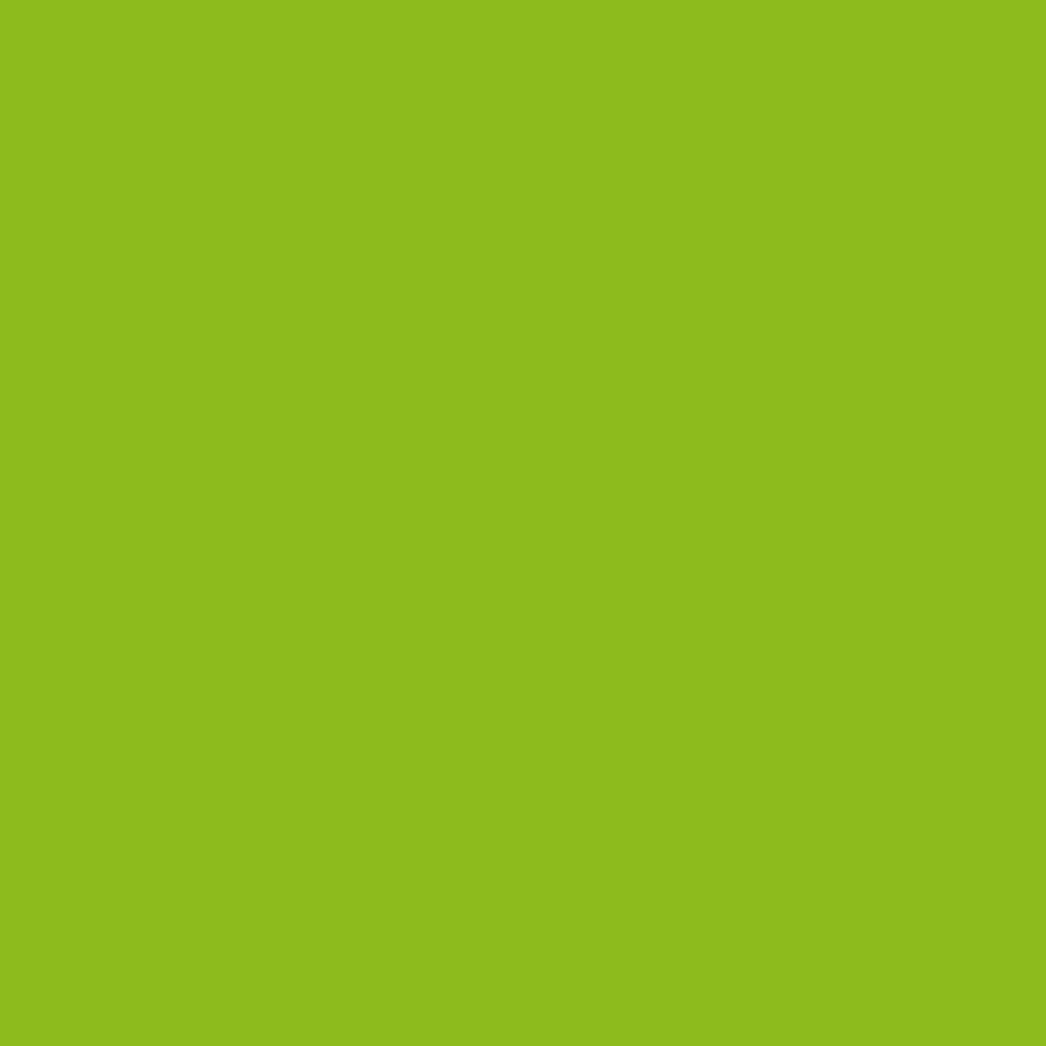 Paintbrush Studios Painter's Palette Solid Apple Green