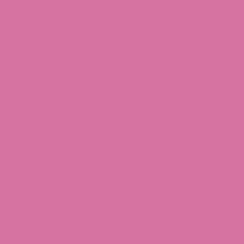 Paintbrush Studios Painter's Palette Solid Bubblegum