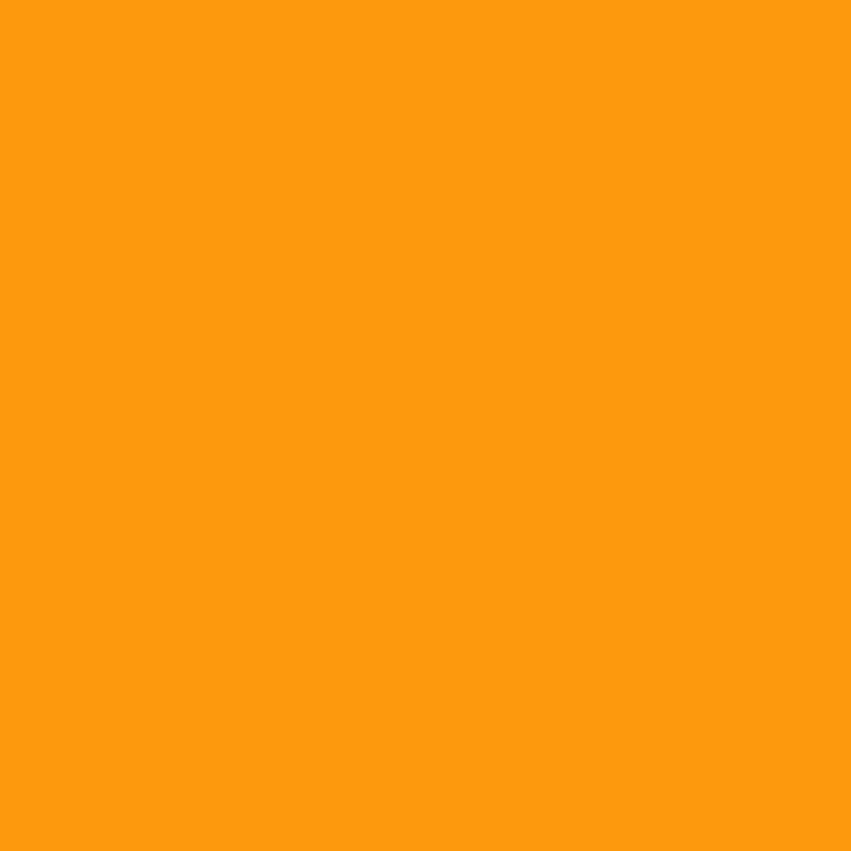 Paintbrush Studios Painter's Palette Solid Clementine
