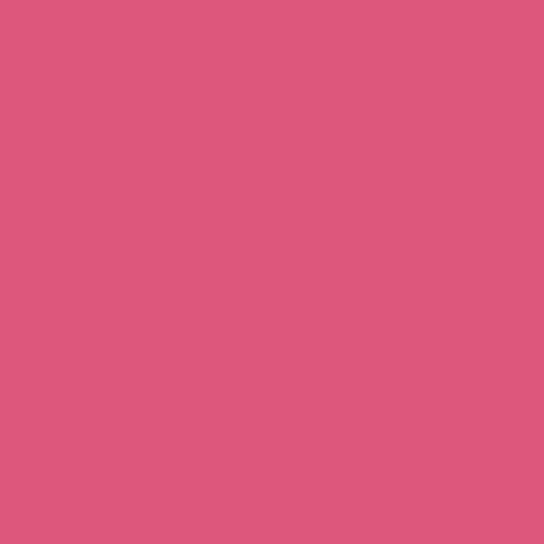 Paintbrush Studios Painter's Palette Solid Blush