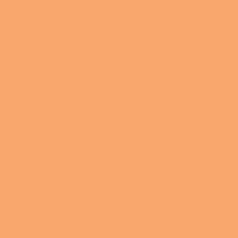 Paintbrush Studios Painter's Palette Solid Amber