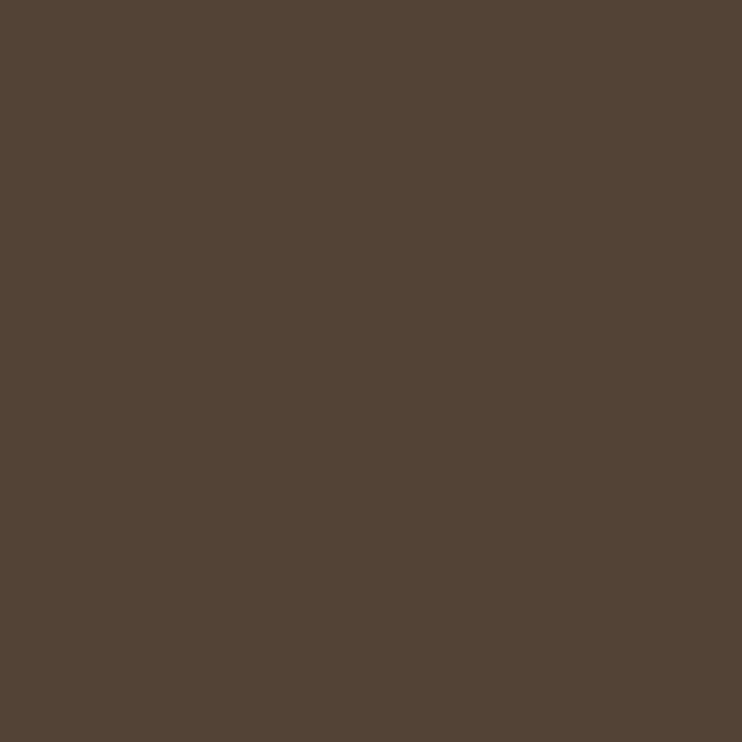 Paintbrush Studios Painter's Palette Solid Burnt Sienna
