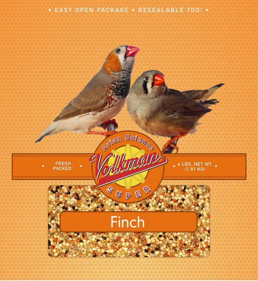 VM Vita Finch 4#