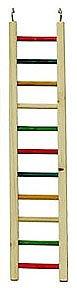 cai 246 rainbow ladder 24
