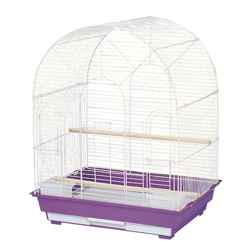 Cage ES 20x16 A asst colors Store Pick-up Only