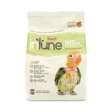 Intune Handfeeding Formula 5lb