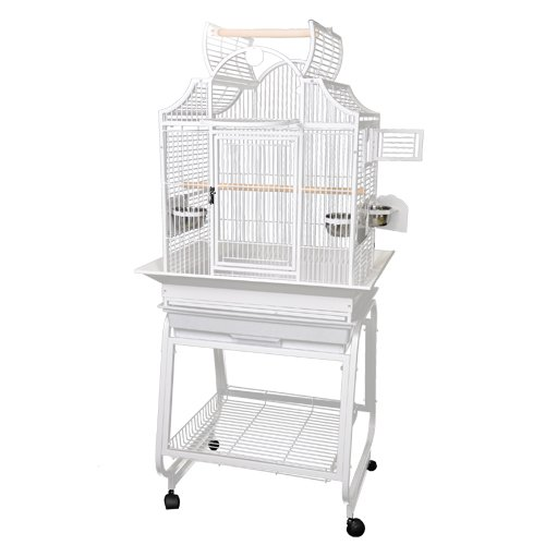 Cage 503 Napoleon Top Store Pick-up Only