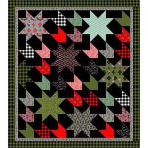 Comfort and Joy | Tula Pink | Watergirl Quilt Co.